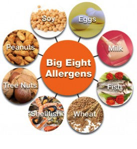 big-8-allergens-for-allertrain-on-lone-allergy-training-for-restaurants-275x300